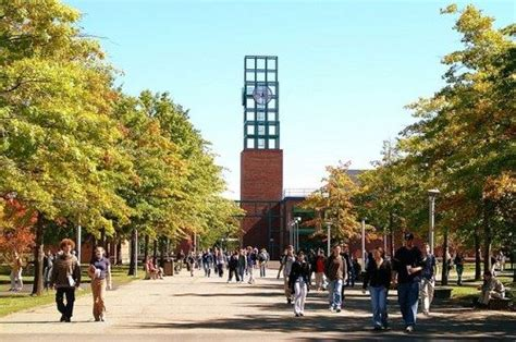 Binghamton Mba Application by Top 25 Mba Programs In New York 2017