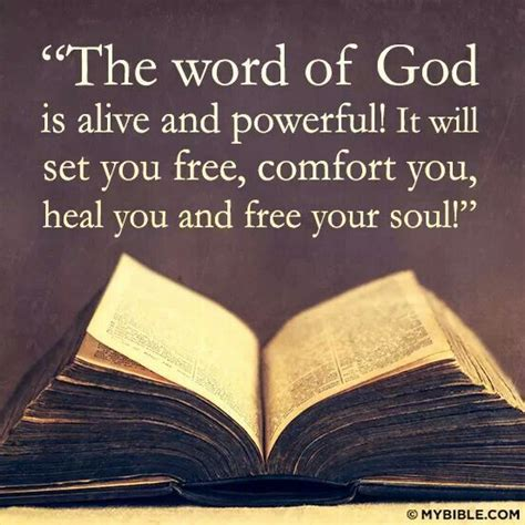 word of comfort in the bible 25 best ideas about word of god on pinterest word of