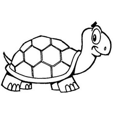 tartaruga lada carros para colorir imagem de carros para pintar e educar