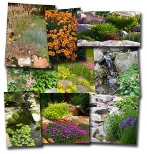 Simple Rock Garden Easy Rock Garden Ideas Photograph Plants For Rock Gardens