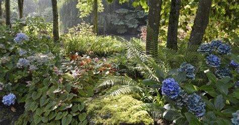 hortensien idee garten - Pflanzen Für Schattige Plätze