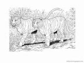 Realistic Dog Coloring Pages Bestofcoloring Com Realistic Coloring Pages Of Animals
