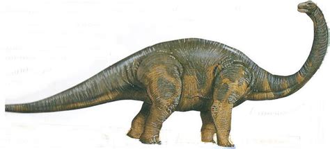 Skicher dinosaurier online