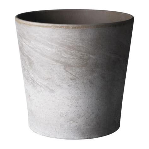 foto di vasi foto vasi vasi e fioriere