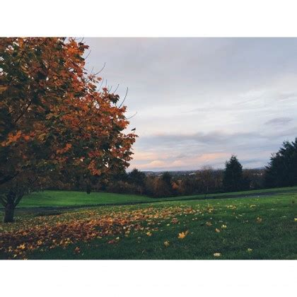instagram landscape tutorial autumn landscape instagram picture by carmenmariez