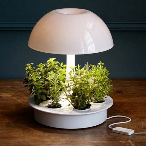 plant light 20 smart and stylish tabletop gardens urban gardens
