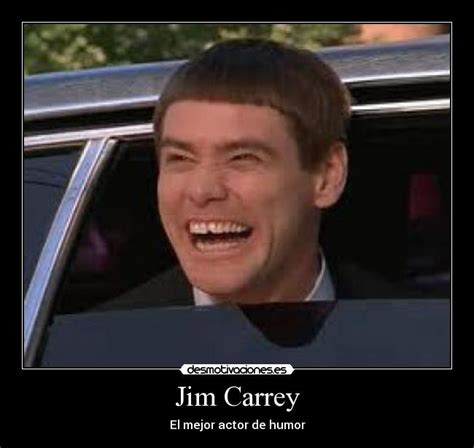 Jim Carey Meme - jim carrey meme www imgkid com the image kid has it