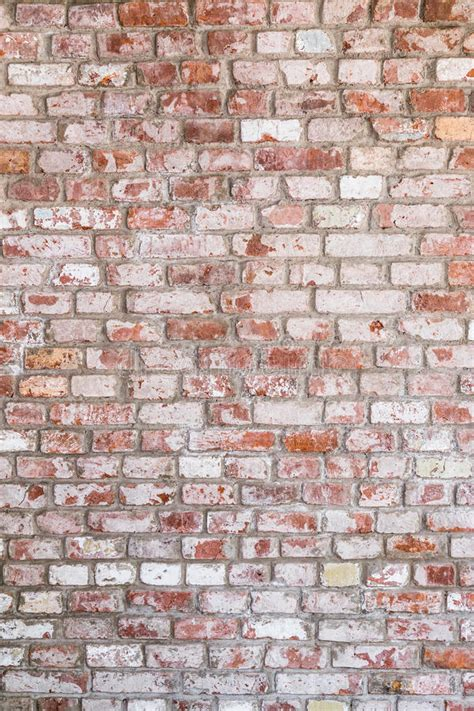 texture of old rustic brick wall painted with white stock photo image of brick architecture