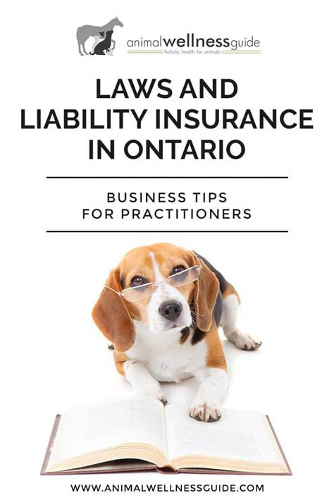 animal massage laws  practitioner liability insurance