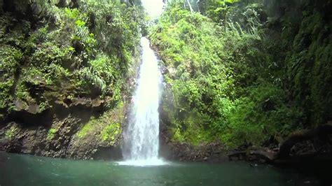 Martinique Randonnée Cascade Didier.mov   YouTube