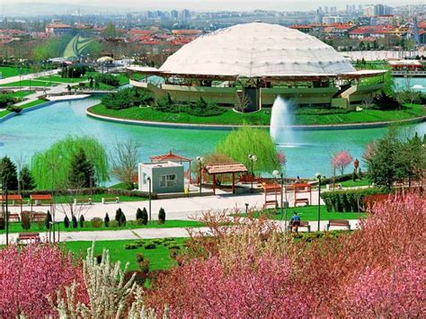 holiday  ankara turkey dream  holiday