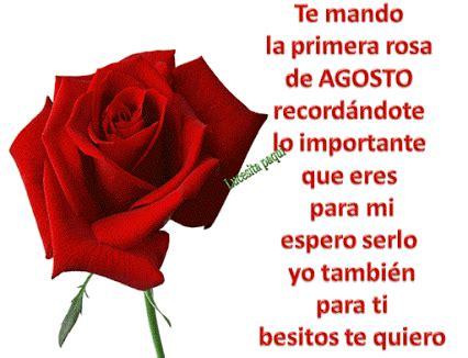 imagenes de rosas para mi esposo frases con rosas para compartir y dedicar a tu amor