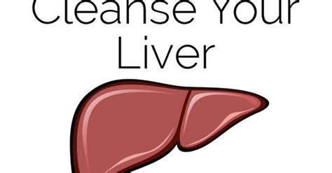 19 Foods To Detox Liver by 19 Foods That Naturally Cleanse Your Liver