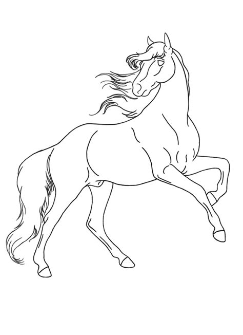 coloring pages of horses rearing rearing horses coloring coloring pages