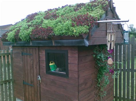 green roof yoblog musings   church youth officer