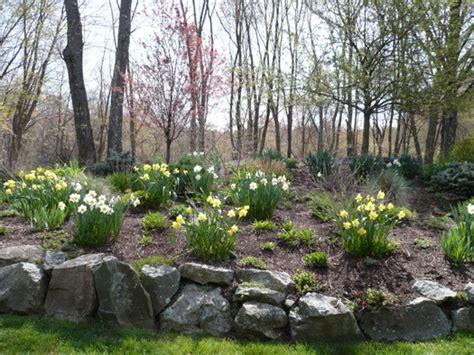 Bulb Garden Ideas Bulb Garden Landscaping Ideas