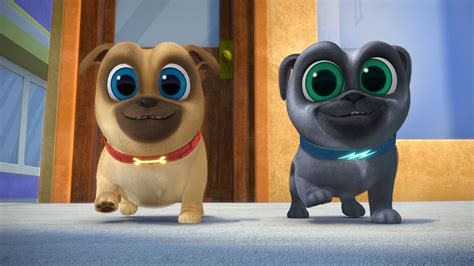 puppy pals bob disney junior adopts second puppy pals season animation magazine