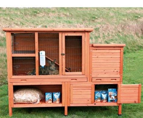 gabbie per conigli nani prezzi coniglio nano ariete prezzo conigli nani coniglio nano
