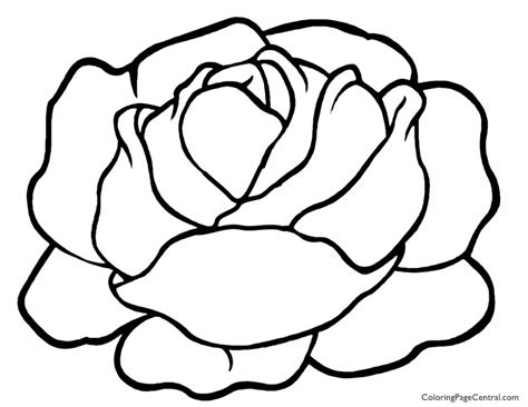 Lettuce 01 Coloring Page Coloring Page Central Coloring Pages On