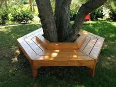 bench seat around tree 1000 ideas about tree bench on pinterest tree seat bench around trees and fence