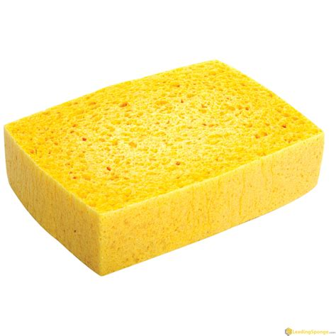 Cleaning Sponge cleaning sponge