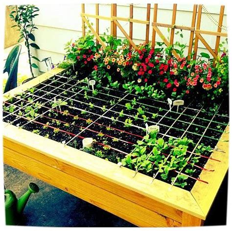 cheap container gardening 1000 ideas about cheap raised garden beds on