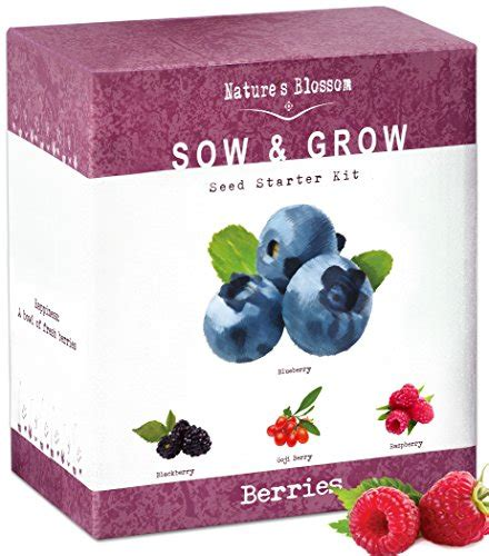 grow  types  tomatoes  seed sweet red tomato