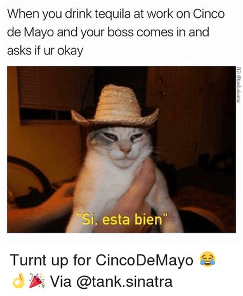Memes 5 De Mayo - when you drink tequila at work on cinco de mayo and your
