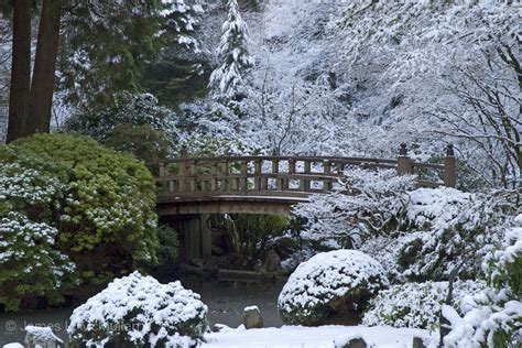 japanese garden in winter portland japanese garden l mcmullen