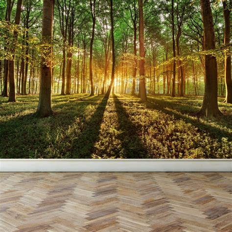 repositionable wall murals wall mural in the depths of a forest peel and stick repositionable fabric wallpaper for