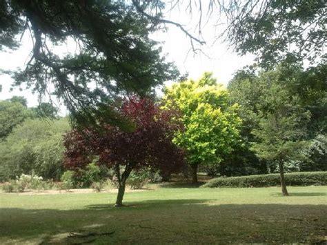 Emmarentia Botanical Gardens Garden Picture Of Johannesburg Botanical Gardens And Emmarentia Dam Johannesburg
