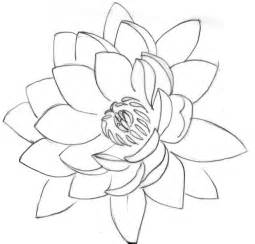 Lotus Outline Picture 37 Outline Lotus Tattoos Collection
