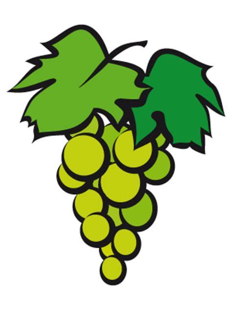 imagenes infantiles uvas dibujos de frutas para colorear y pintar todopap 225 s