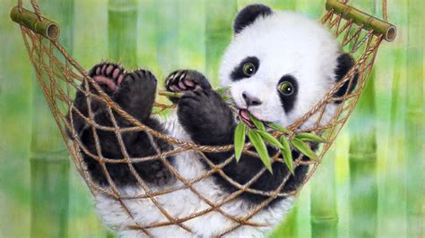 wallpaper hd panda panda wallpaper for laptops wallpapersafari