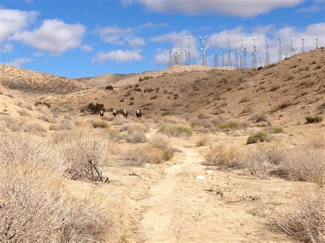 pct section hikes pacific crest trail section c whitewater california