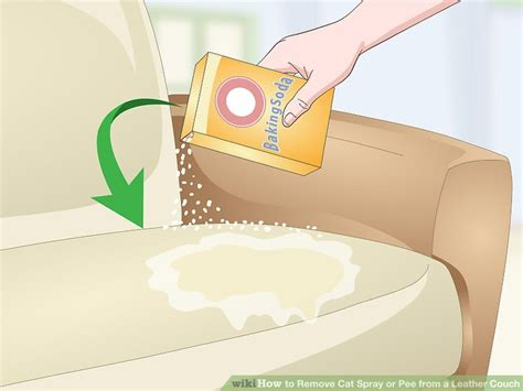 remove cat pee from couch how do you get cat spray out of furniture best furniture