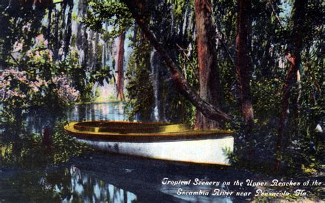 Pensacola Fl Court Records Florida Memory Tropical Scenery On The Reaches Of