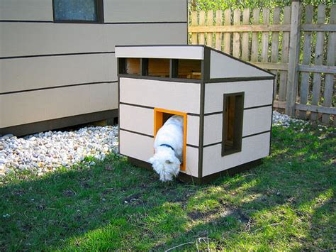 dog shed house modern shed meets modern dog house dog milk
