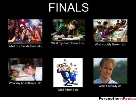 memes  perfectly describe  horrors  finals