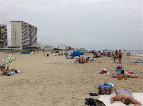 comfort inn gold coast ocean city md reviews this is the beach that you walk to across the street the