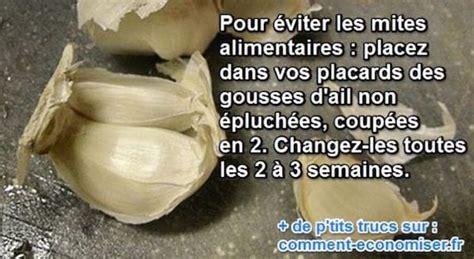 Chasser Les Mites by L Astuce Naturelle Pour Se D 233 Barrasser Des Mites Pour De Bon