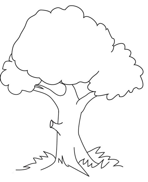 Tree Coloring Pages Free Printable Coloring Pages Printable Tree Coloring Page