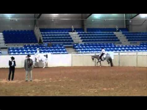 color breed congress color breed congress 2012 western pleasure