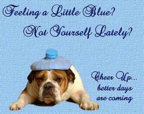 cheer up puppy cheer up graphics images pictures