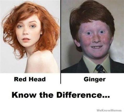 Red Hair Girl Meme - what is the difference between a redhead and a ginger quora