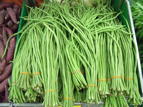 couched meaning in hindi file long bean jpg wikimedia commons