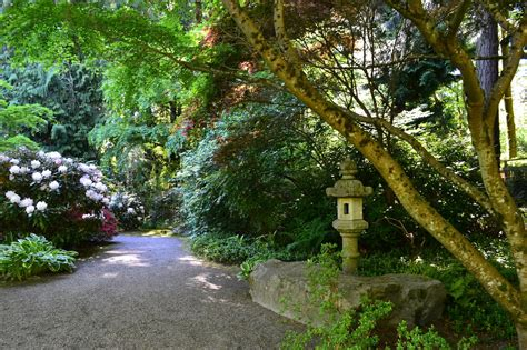 Botanical Gardens Bellevue Letters Sunday Morning Stroll Bellevue Botanical Garden