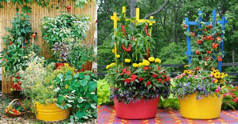 garden tips 15 stunning container vegetable garden design ideas tips