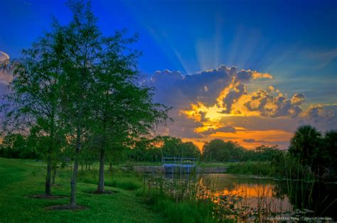 Sunset Garden by Fishing At Canal In Sandhill Crane Park During Sunset At