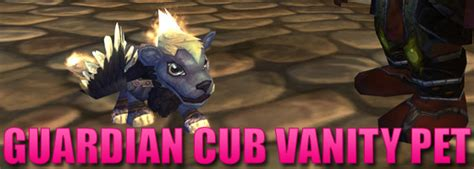 Wow Vanity Pets by Guardian Cub Wow Vanity Pet Journey Of Bokou